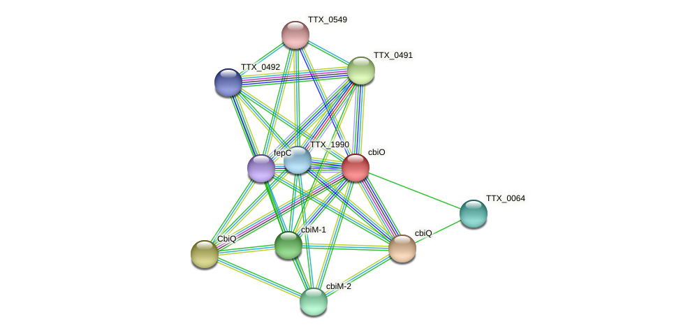 TTX_0065 protein (Thermoproteus tenax) - STRING interaction network