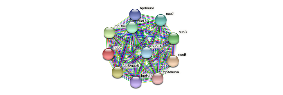 nuoC protein (Thermoproteus tenax) - STRING interaction network