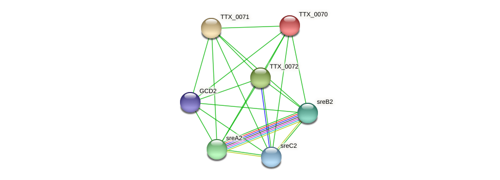 TTX_0070 protein (Thermoproteus tenax) - STRING interaction network