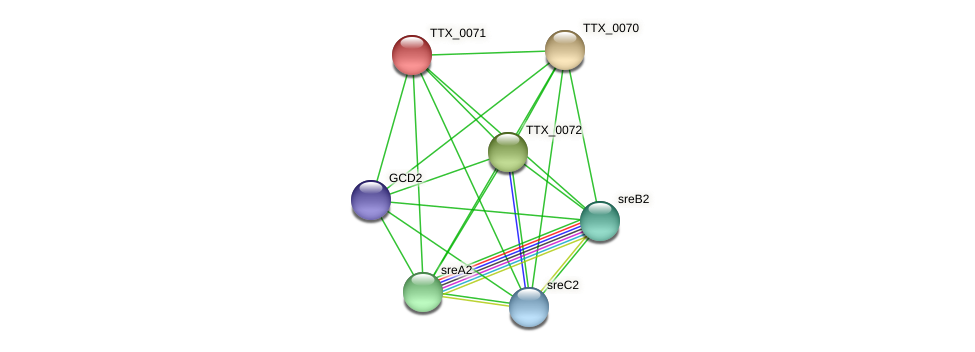 TTX_0071 protein (Thermoproteus tenax) - STRING interaction network