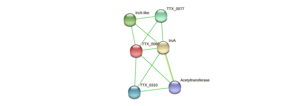 TTX_0080 protein (Thermoproteus tenax) - STRING interaction network