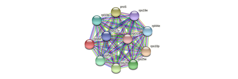 rps6e protein (Thermoproteus tenax) - STRING interaction network