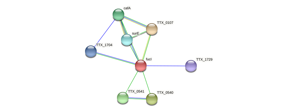 fucI protein (Thermoproteus tenax) - STRING interaction network