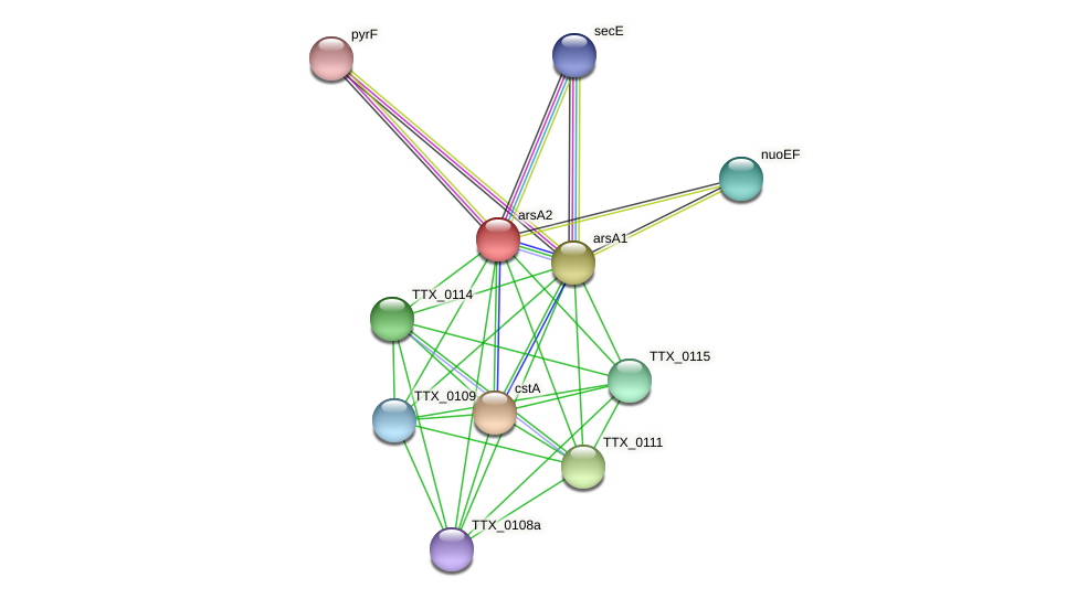 arsA2 protein (Thermoproteus tenax) - STRING interaction network
