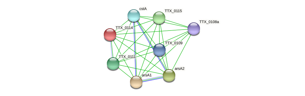 TTX_0114 protein (Thermoproteus tenax) - STRING interaction network