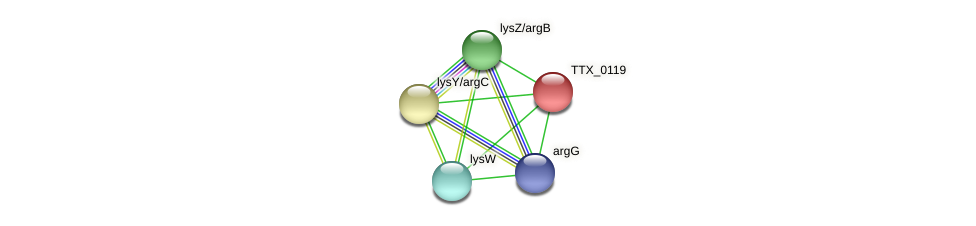 TTX_0119 protein (Thermoproteus tenax) - STRING interaction network
