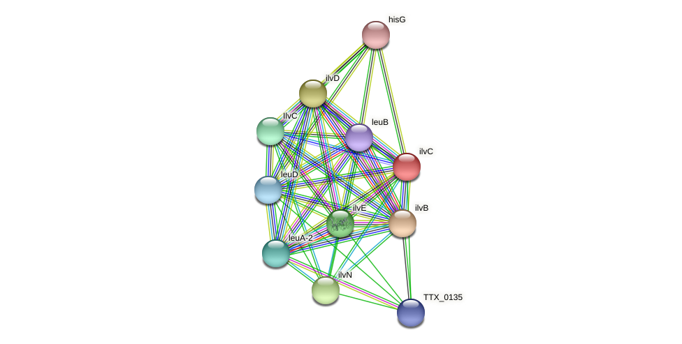 TTX_0132 protein (Thermoproteus tenax) - STRING interaction network