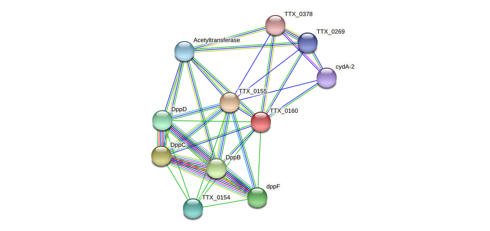 TTX_0160 protein (Thermoproteus tenax) - STRING interaction network
