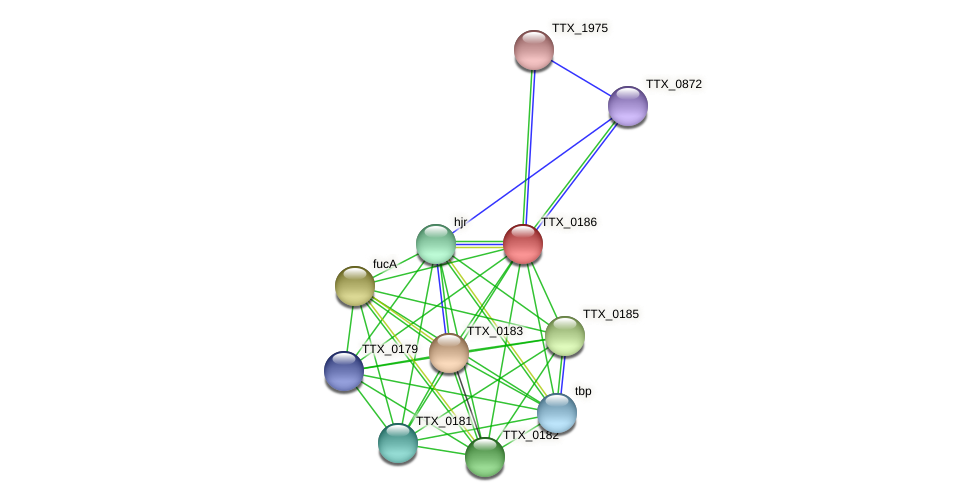 TTX_0186 protein (Thermoproteus tenax) - STRING interaction network