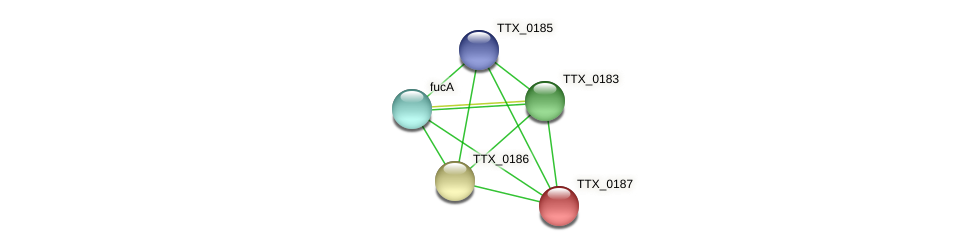 TTX_0187 protein (Thermoproteus tenax) - STRING interaction network