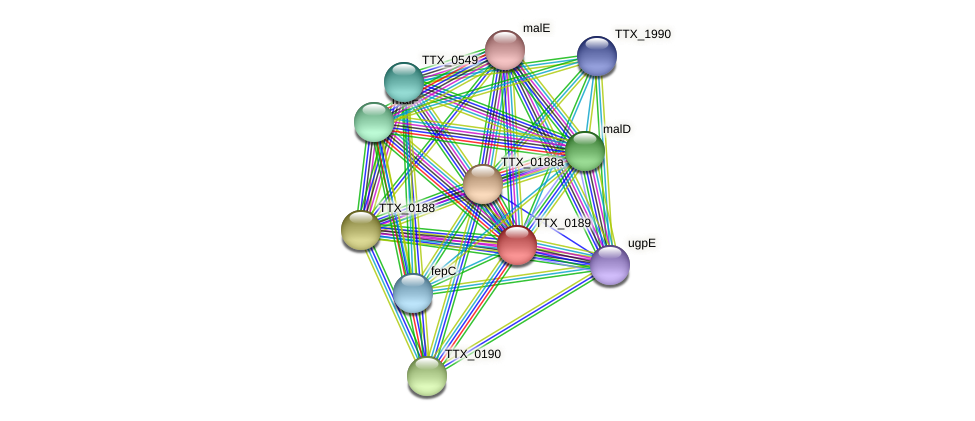 TTX_0189 protein (Thermoproteus tenax) - STRING interaction network