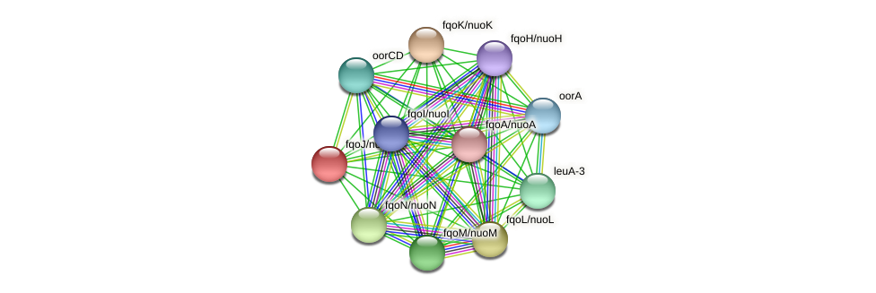 fqoJ/nuoJ protein (Thermoproteus tenax) - STRING interaction network