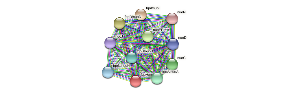 fqoH protein (Thermoproteus tenax) - STRING interaction network