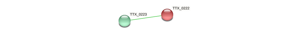 TTX_0222 protein (Thermoproteus tenax) - STRING interaction network