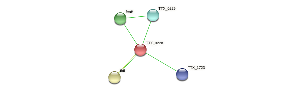 TTX_0228 protein (Thermoproteus tenax) - STRING interaction network