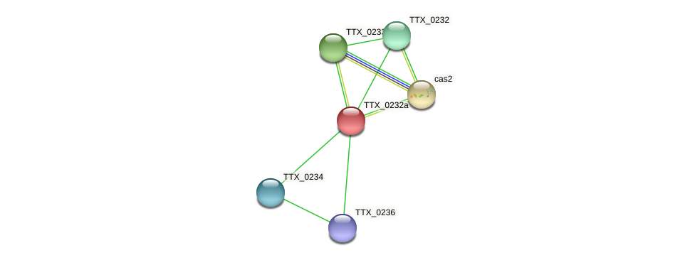 TTX_0232a protein (Thermoproteus tenax) - STRING interaction network