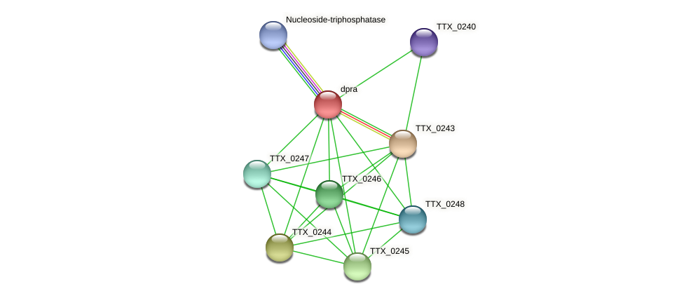 dpra protein (Thermoproteus tenax) - STRING interaction network