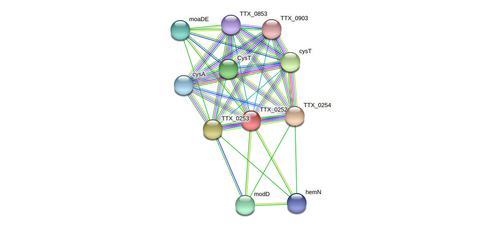 TTX_0252 protein (Thermoproteus tenax) - STRING interaction network