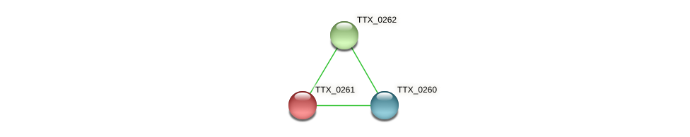 TTX_0261 protein (Thermoproteus tenax) - STRING interaction network