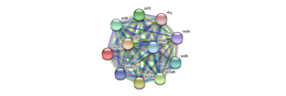mcm protein (Thermoproteus tenax) - STRING interaction network