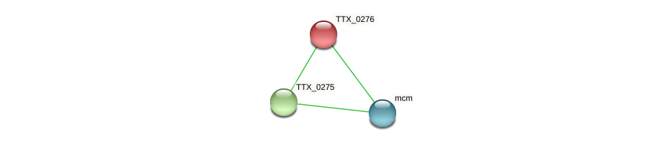 TTX_0276 protein (Thermoproteus tenax) - STRING interaction network