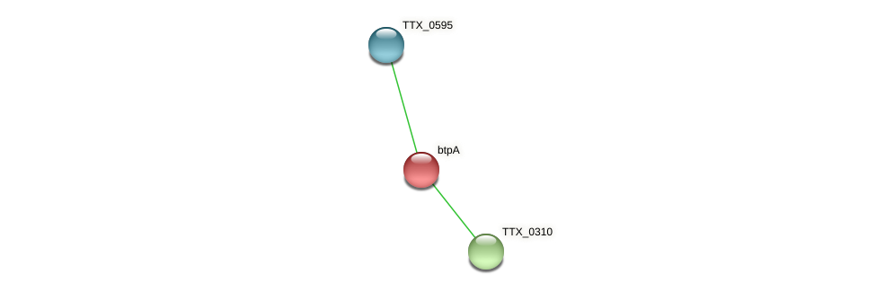 btpA protein (Thermoproteus tenax) - STRING interaction network