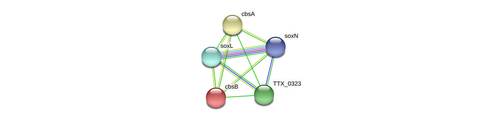 cbsB protein (Thermoproteus tenax) - STRING interaction network