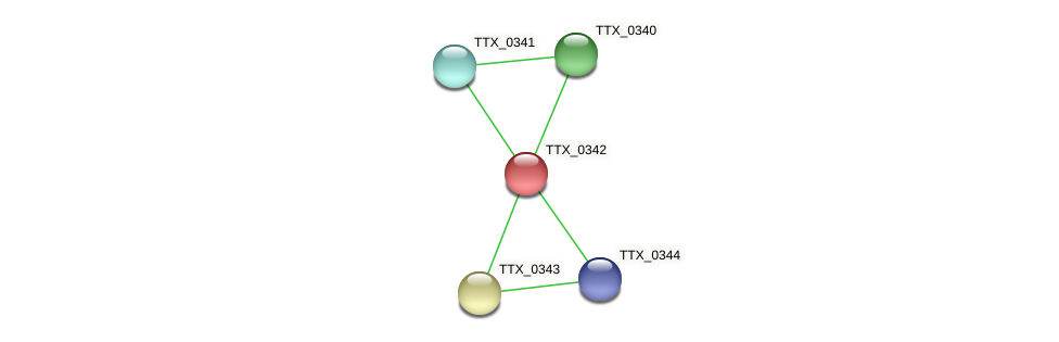TTX_0342 protein (Thermoproteus tenax) - STRING interaction network