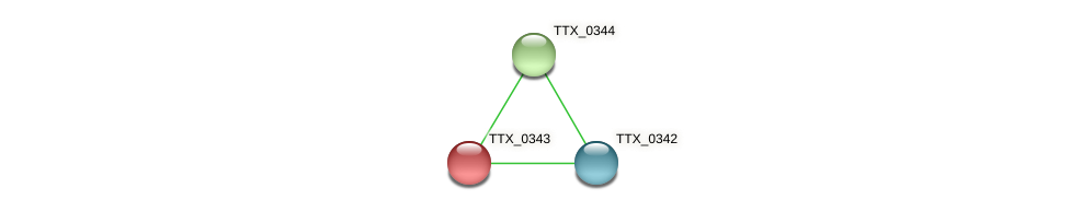 TTX_0343 protein (Thermoproteus tenax) - STRING interaction network