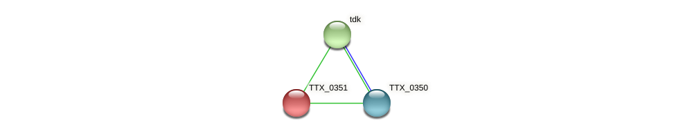TTX_0351 protein (Thermoproteus tenax) - STRING interaction network