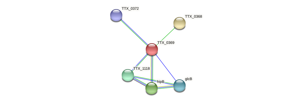 TTX_0369 protein (Thermoproteus tenax) - STRING interaction network