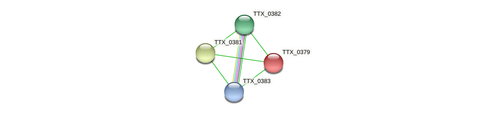 TTX_0379 protein (Thermoproteus tenax) - STRING interaction network