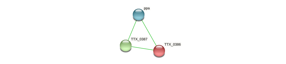 TTX_0386 protein (Thermoproteus tenax) - STRING interaction network