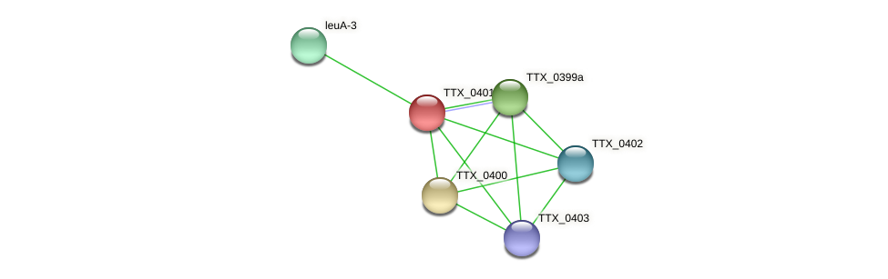 TTX_0401 protein (Thermoproteus tenax) - STRING interaction network