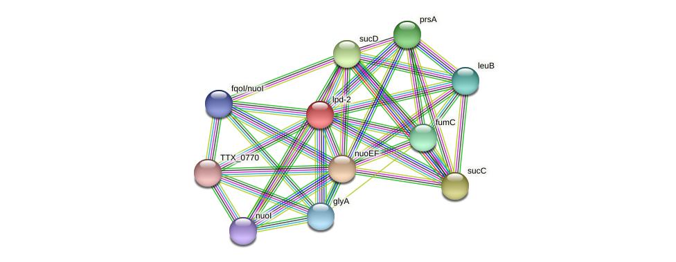 lpd-2 protein (Thermoproteus tenax) - STRING interaction network