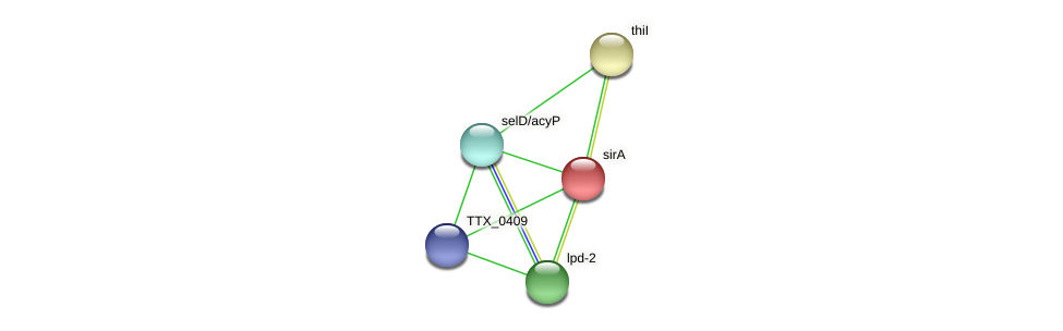 TTX_0408 protein (Thermoproteus tenax) - STRING interaction network
