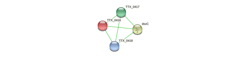 TTX_0416 protein (Thermoproteus tenax) - STRING interaction network