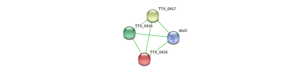 TTX_0418 protein (Thermoproteus tenax) - STRING interaction network