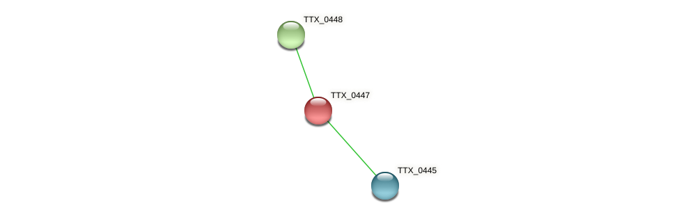 TTX_0447 protein (Thermoproteus tenax) - STRING interaction network