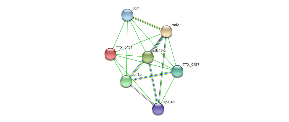 TTX_0454 protein (Thermoproteus tenax) - STRING interaction network