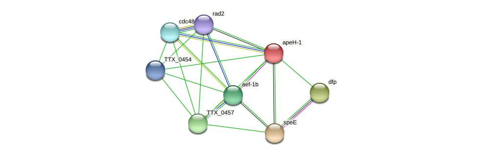 apeH-1 protein (Thermoproteus tenax) - STRING interaction network