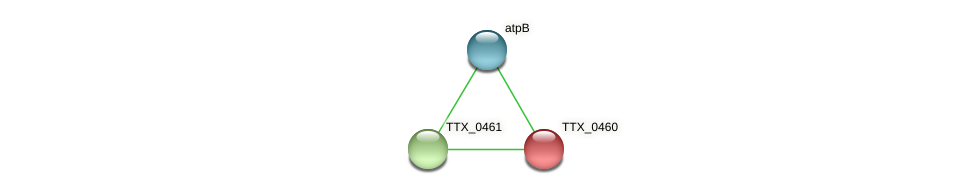 TTX_0460 protein (Thermoproteus tenax) - STRING interaction network