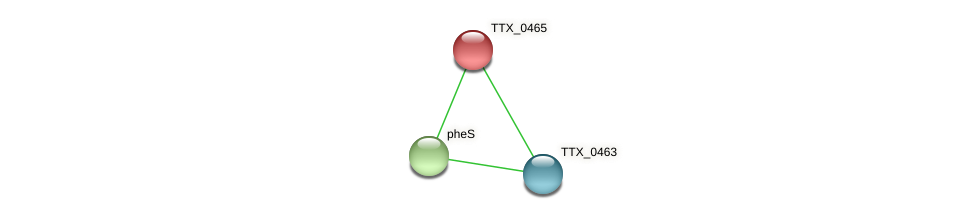 TTX_0465 protein (Thermoproteus tenax) - STRING interaction network