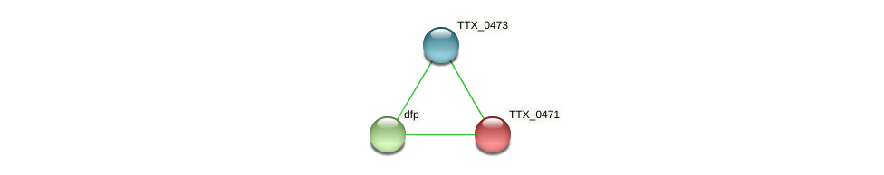 TTX_0471 protein (Thermoproteus tenax) - STRING interaction network