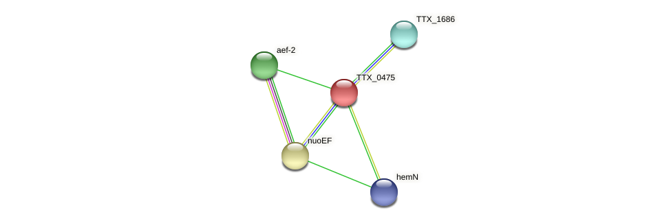 TTX_0475 protein (Thermoproteus tenax) - STRING interaction network