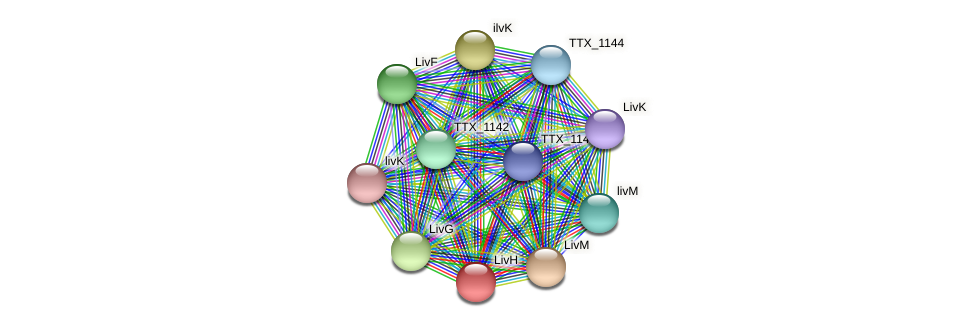 TTX_0483 protein (Thermoproteus tenax) - STRING interaction network