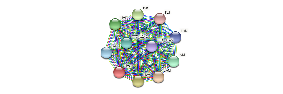 TTX_0485 protein (Thermoproteus tenax) - STRING interaction network