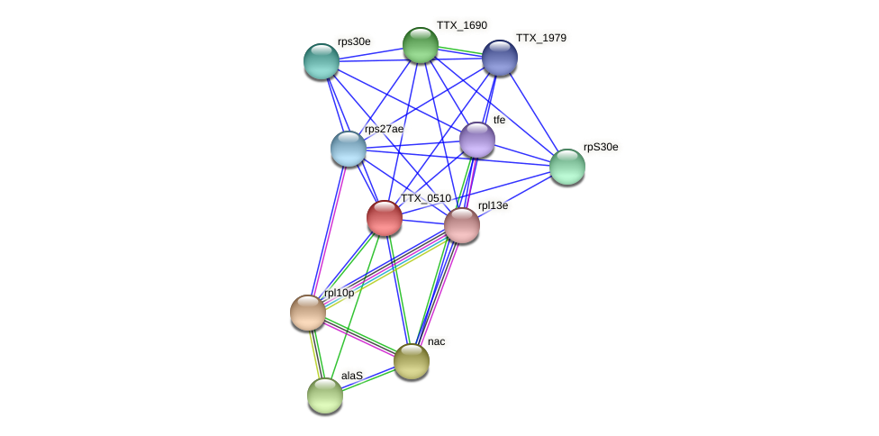 TTX_0510 protein (Thermoproteus tenax) - STRING interaction network