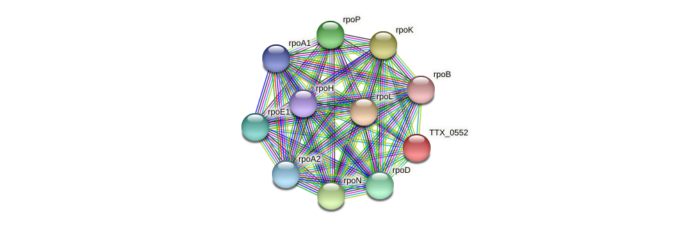 TTX_0552 protein (Thermoproteus tenax) - STRING interaction network
