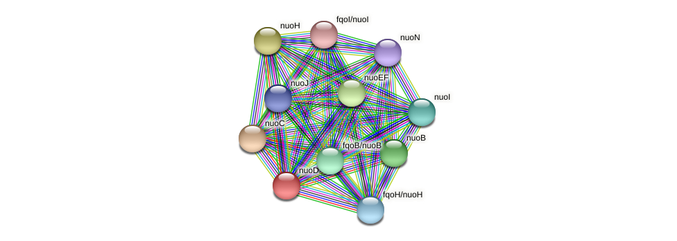 nuoD protein (Thermoproteus tenax) - STRING interaction network